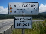 Can be seen on a lot of bridges